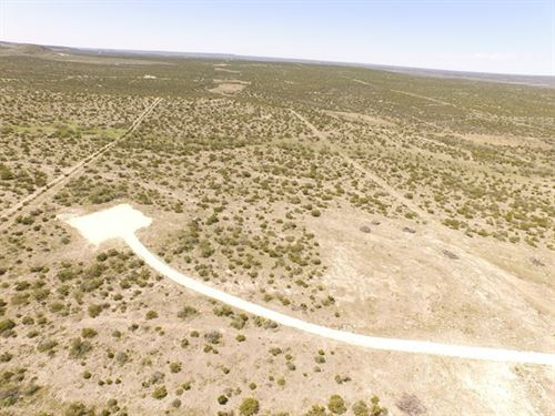 50.118 Acre Home Site Bull Run : Mertzon : Irion County : Texas