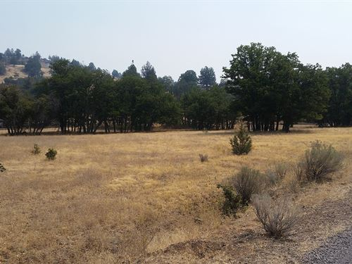 Recreational/Agricultural Land : Montague : Siskiyou County : California