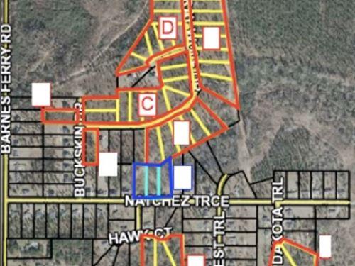 Griffin Crossing Residential Lots : Macon : Bibb County : Georgia