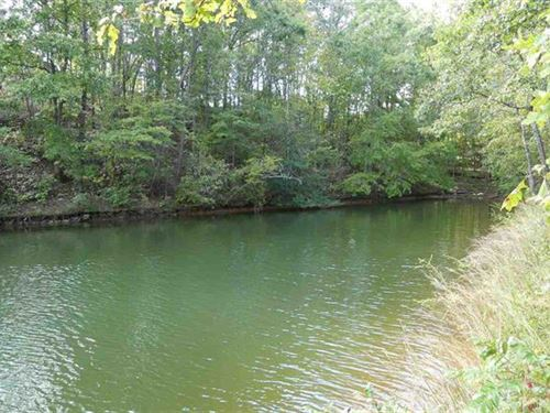 Lake Lot In Desirable Area : Wedowee : Randolph County : Alabama