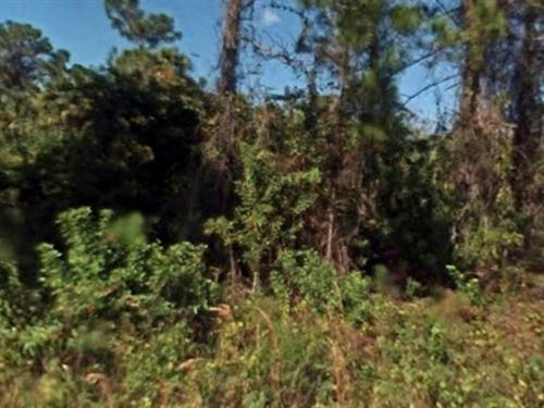 Lee County, .50 Acres $14,999 : Leigh Acres : Lee County : Florida