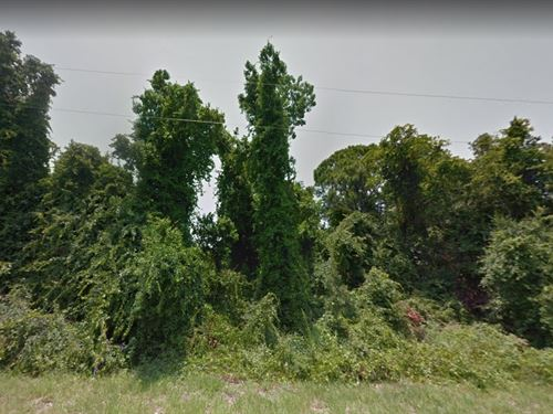 Highlands County, Fl $38,000 : Lake Placid : Highlands County : Florida