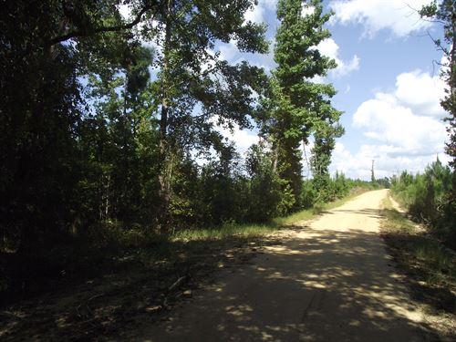 Summertown Country Estates Lot 13 : Summertown : Emanuel County : Georgia