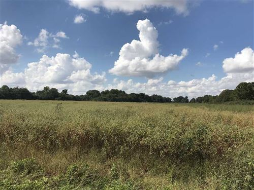 40 Acres For Sale in Cross County : Cherry Valley : Cross County : Arkansas