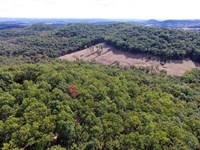 72-Acre Recreational Tract Borderi : Forsyth : Taney County : Missouri