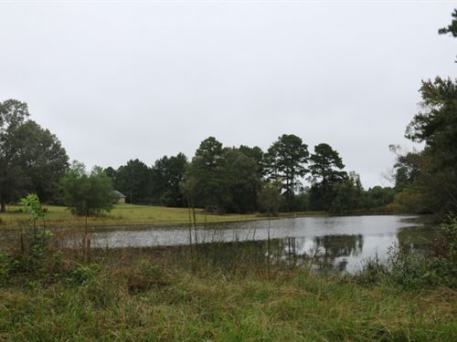10 Acres With A Home In Rankin Coun : Pearl : Rankin County : Mississippi