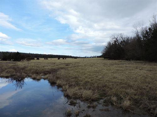 Mixed Open Pasture & Wooded Land : Waldron : Scott County : Arkansas