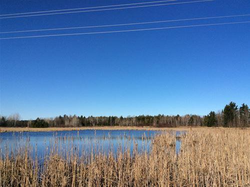Land, Hunting, Building Site, Pond : Sandstone : Pine County : Minnesota