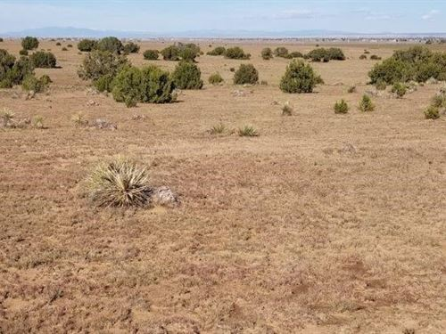 Moriarty NM 54 Acres Manufactured : Moriarty : Torrance County : New Mexico