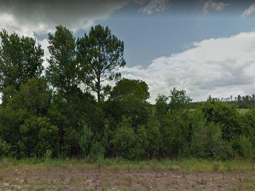 Polk County, Fl $8,200 : Polk City : Polk County : Florida