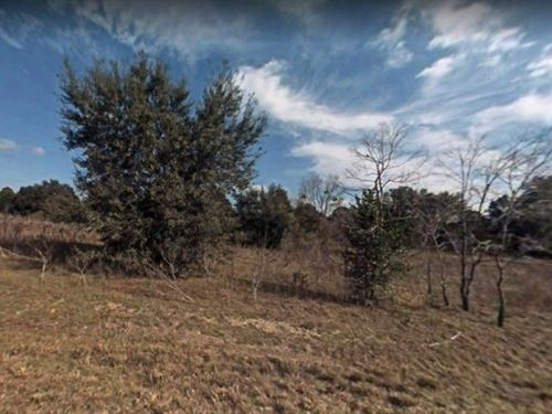 Marion County, Fl $12,000 : Ocala : Marion County : Florida