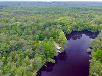 870 Ac Satilla River Bluff Reserve : Blackshear : Pierce County : Georgia