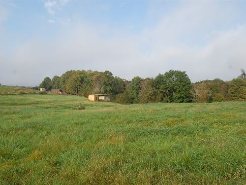 Science Hill Rd, 5 Acres : Newcomerstown : Guernsey County : Ohio