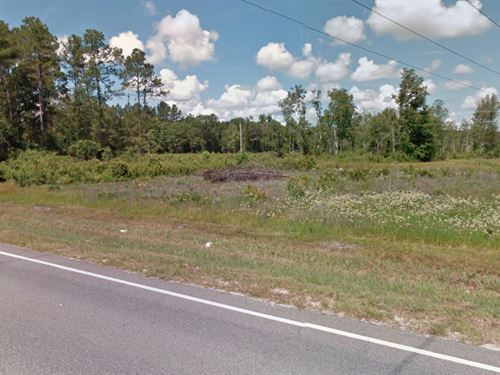 17 Acre Gentleman Farm Site : Hortense : Brantley County : Georgia