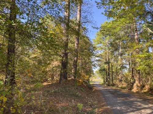 251 Acres Lightfoot Road : Huntington : Angelina County : Texas