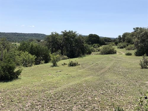 Exotics, Low Down, Great Access : Rocksprings : Edwards County : Texas