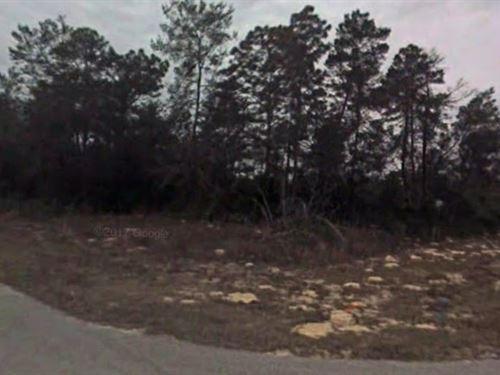 Corner Lot Dont Delay : Ocala : Marion County : Florida