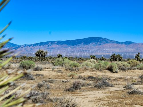 Los Pollos Hermanos Special : Lancaster : Los Angeles County : California