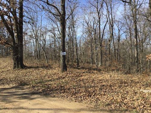 3.4 Acres Lot 20 : Poplar Bluff : Butler County : Missouri