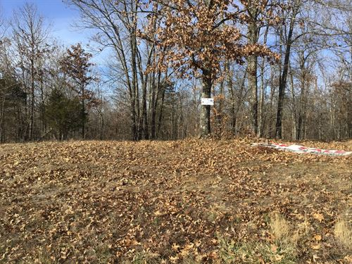 Lot 19 3.24 Acres : Poplar Bluff : Butler County : Missouri