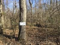 3.48 Acres Ready to Develop : Poplar Bluff : Butler County : Missouri