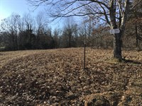Tract 16 3.75 Acres Close to Poplar : Poplar Bluff : Butler County : Missouri