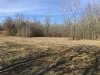 Tract 13 6 Acres Close to Poplar : Poplar Bluff : Butler County : Missouri