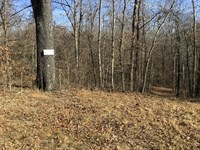 Tract 11 3.9 Acres Minutes From : Poplar Bluff : Butler County : Missouri