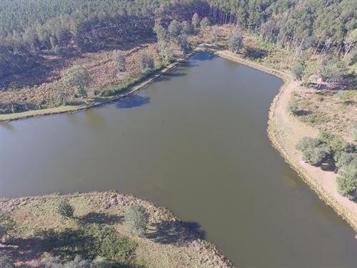 2 Ponds For The Price Of 1 : Cairo : Grady County : Georgia