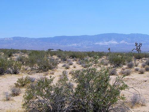 Beautiful 5 Acres Lucerne Valley : Lucerne Valley : San Bernardino County : California