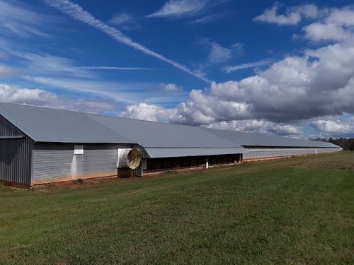 Poultry Farm : Ashford : Houston County : Alabama