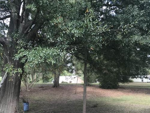 Residential Lot : Wesson : Copiah County : Mississippi