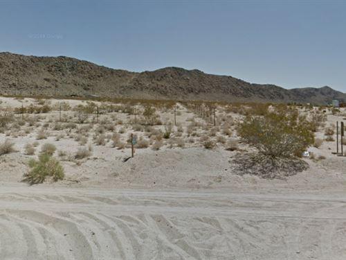 2.5 Acres In Joshua Tree, Ca : Joshua Tree : San Bernardino County : California