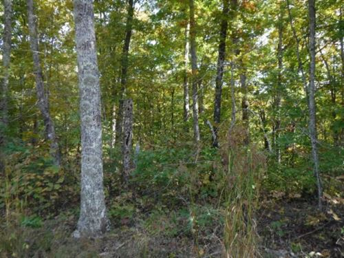 11.14 Ac Wooded, Views, Spring : Crawford : Overton County : Tennessee