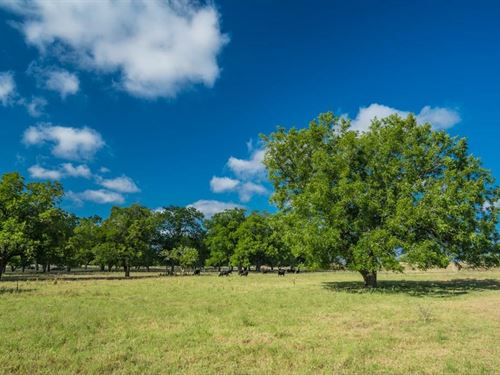 Small Acreage With 400 Gpm Well : Fredericksburg : Gillespie County : Texas