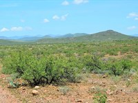 Scenic Ranch Land, No Restrictions : Douglas : Cochise County : Arizona