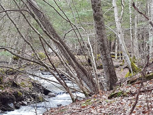 72 Ac+/- Of Mostly Wooded : Herkimer : New York