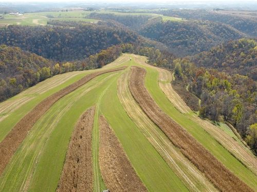 120 Acres Agricultural & Wooded : Genoa : Vernon County : Wisconsin