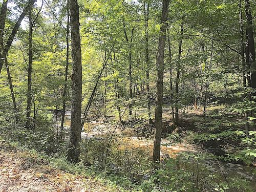 Morganstern Ln Lot 1, 39 Acres : Beverly : Morgan County : Ohio