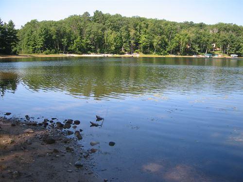 Bird Lake Lot : Lake Tomahawk : Oneida County : Wisconsin
