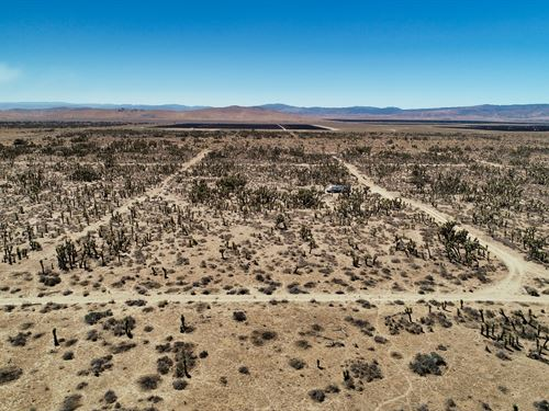 Breaking Badder : Lancaster : Los Angeles County : California