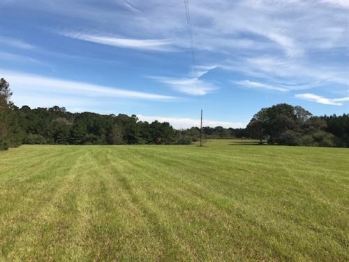 34.7 Acres Rolling Hills : Sandy Hook : Walthall County : Mississippi