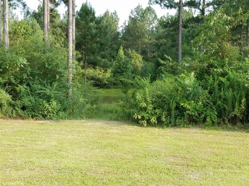 9.28 Acres : Jayess : Pike County : Mississippi