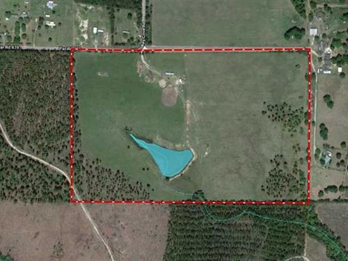 60 Acres, Smokey Cove Rd, Beaurega : Singer : Beauregard Parish : Louisiana