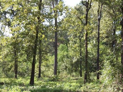 Buckhorn Ridge Lot 2, Bossier Par : Haughton : Bossier Parish : Louisiana