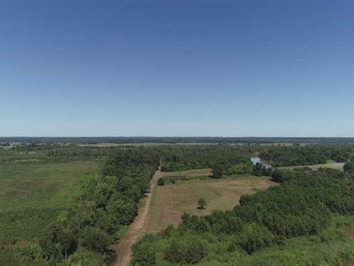 Bayou Pierre Tract, Natchitoches : Natchitoches : Louisiana