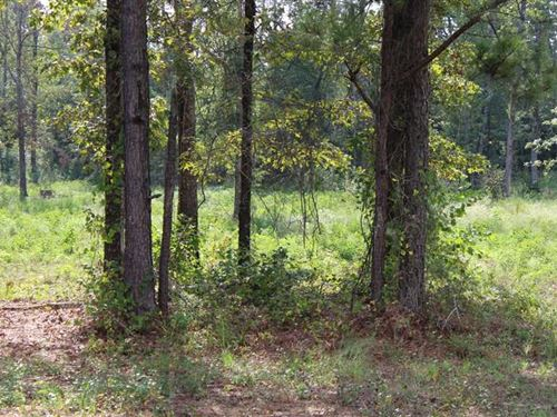Buckhorn Ridge Lot 5, Bossier Par : Haughton : Bossier Parish : Louisiana