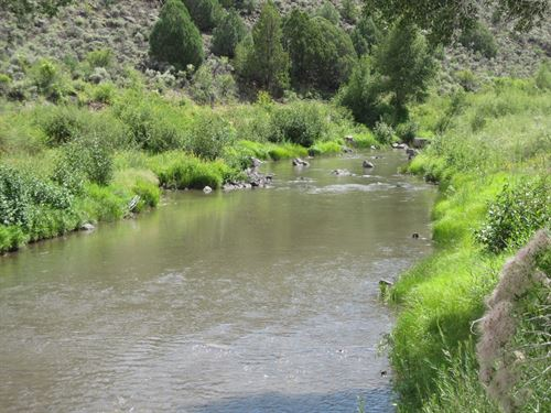 Riverfront Property Close To : Los Pinos : Rio Arriba County : New Mexico