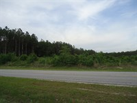 5 Acre Building Lot Just Outside : Camden : Kershaw County : South Carolina