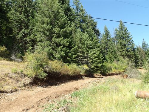 Wooded Land Possible Commercial : Weippe : Clearwater County : Idaho